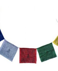 Tibetan Prayer flag with 10 inch flags.